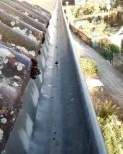 saubere dachrinnen nuernberg wir reinigen ihren dachrinne http://fensterreinigungnuernberg.de/dachrinnenreinigung erlangen fürth nürnberg